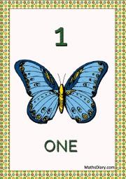 1 blue butterfly