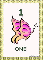 1 butterfly