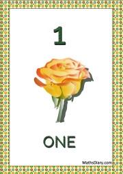 1 rose