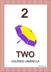 1 umbrella with 2 colors