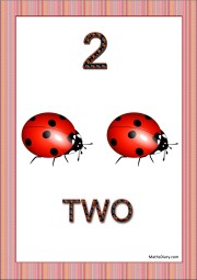 2 insects