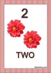 2 red flowers