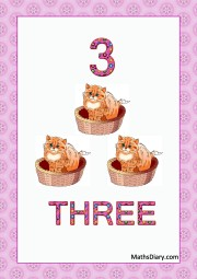 3 cats