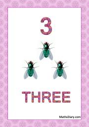 3 house flies