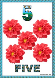 5 red flowers