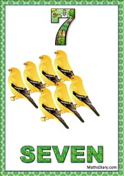 7 yellow sparrows