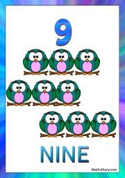 9 owls