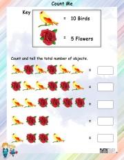Count-me-worksheet- 3